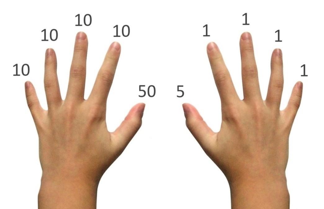 Định nghĩa giá trị biểu diễn của mỗi ngón tay theo phương pháp Chisanbop